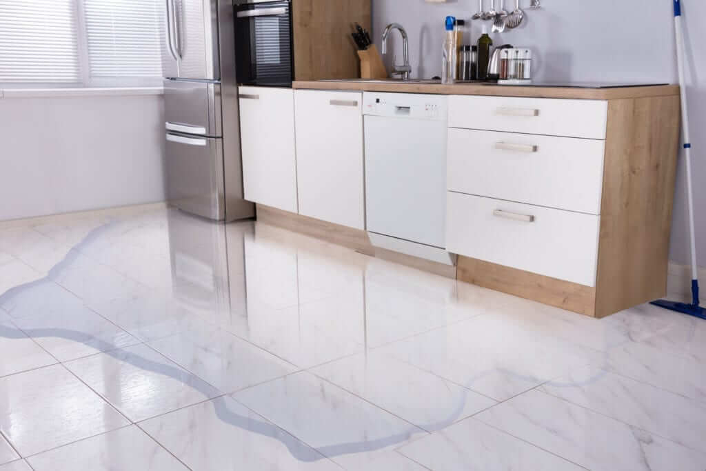 San-Bernardino-water-leak-detect